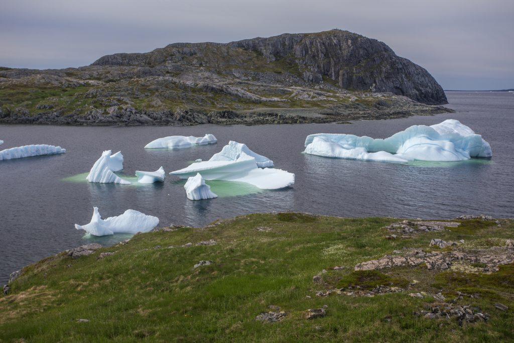 icebergs below Brimstone Head on Fogo Island, Newfoundland