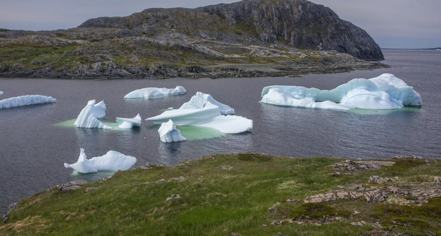 icebergs below Brimstone Head on Fogo Island, Newfoundland