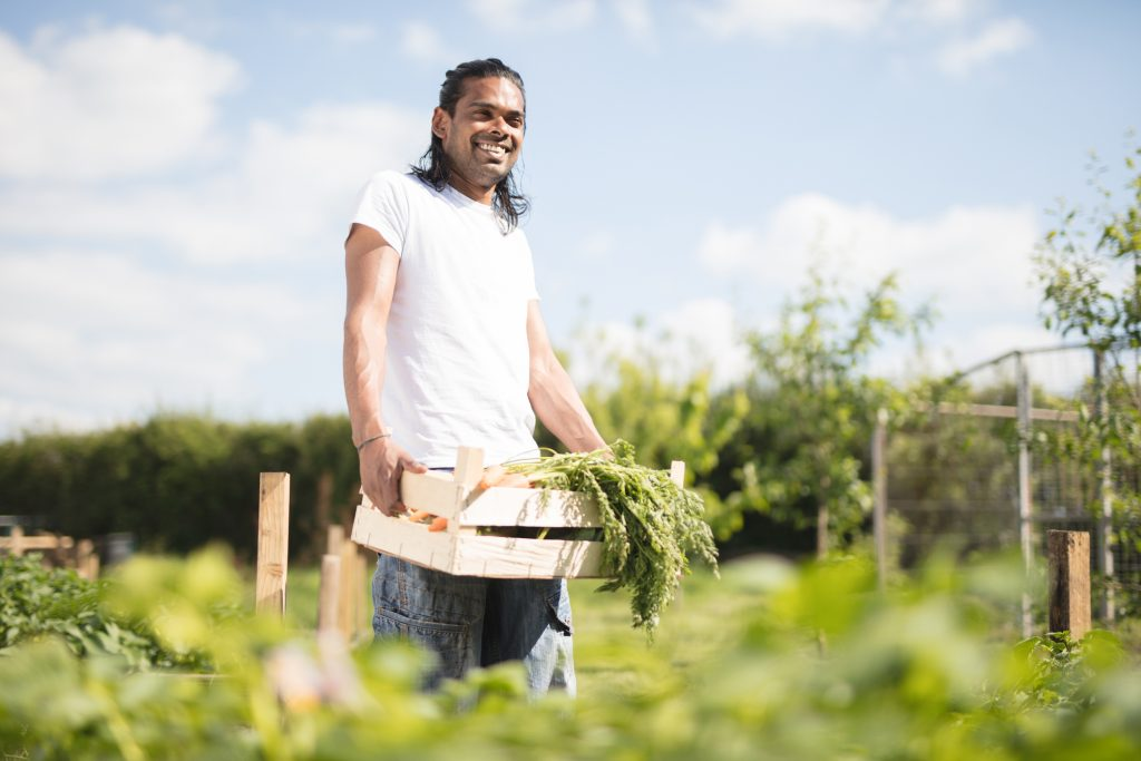 young man working on farm