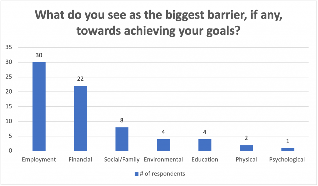 """Chart of answers to """"What do you see as the biggest barrier, if any, towards achieving your goals?"""""""