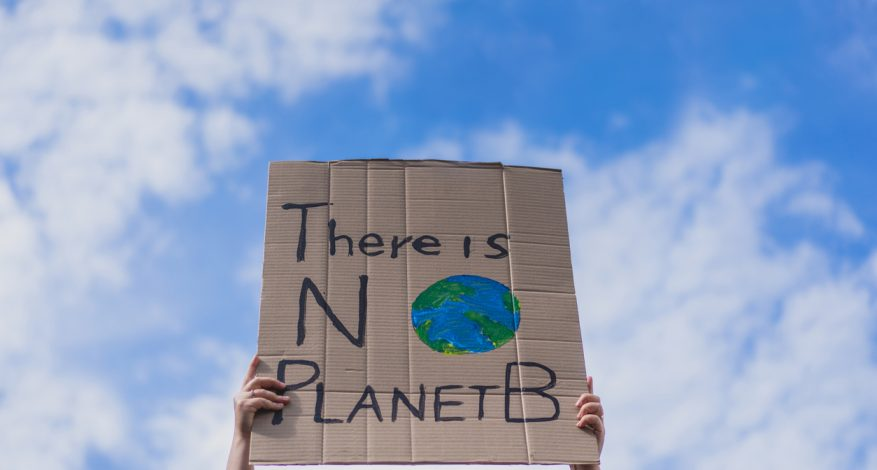 """Close-up of sign at protest reading """"There is no Planet B""""."""